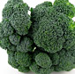 Picture of Broccoli or Cauliflower