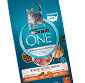 Picture of Purina One Dry Cat Food
