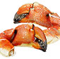 Picture of Rock Crab Claws