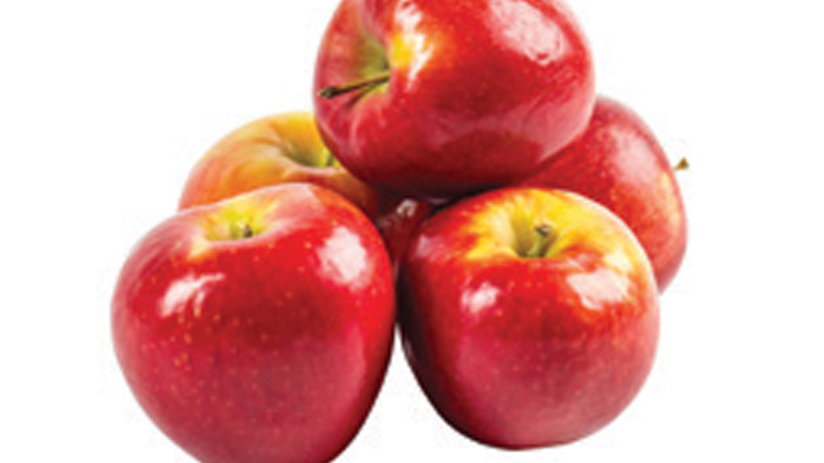 Picture of Washington Premium Sugar Bee Apples