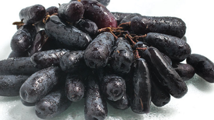 Picture of Sweet Sapphire Black Seedless Grapes