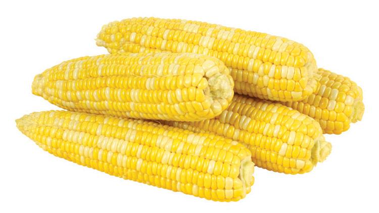 Picture of Fresh Cuts Bi-Color Sweet Corn