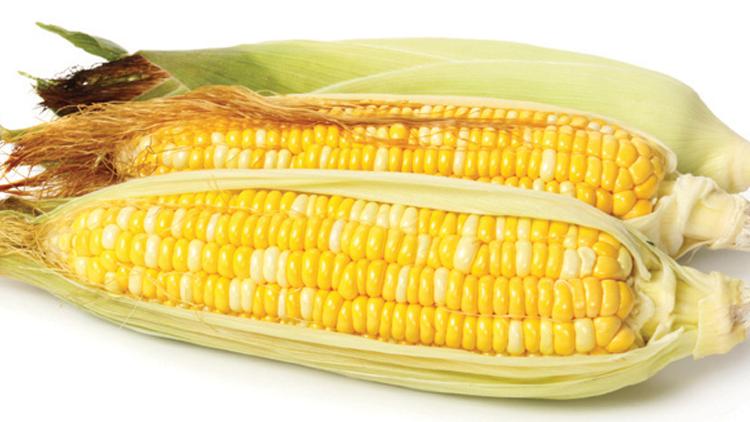 Picture of Honey & Cream Sweet Corn