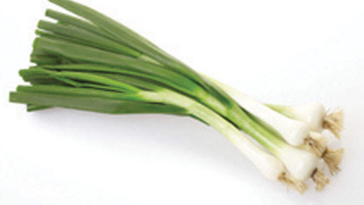 Picture of Green Onions