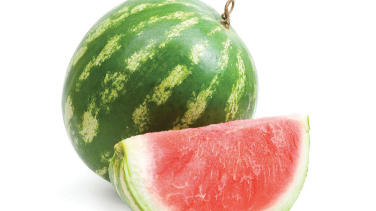 Picture of Mini Red Seedless Watermelon