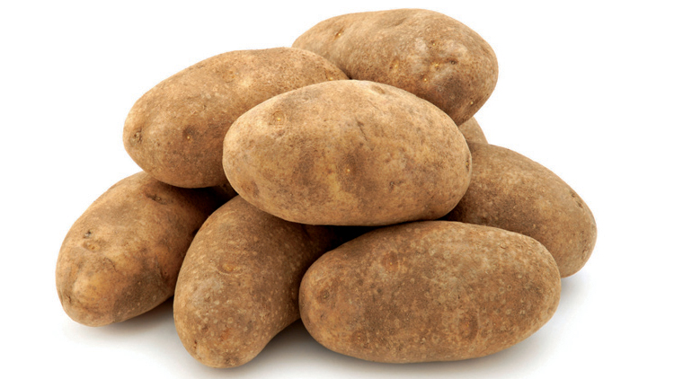 Picture of Best Choice Russet Potatoes