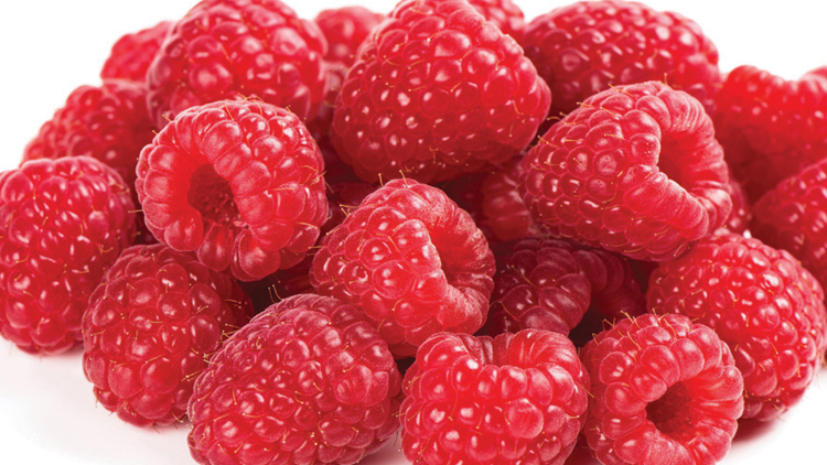 Picture of Raspberries or Blueberries