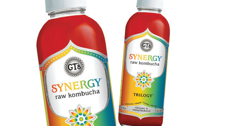 Picture of GT's Synergy Raw Kombucha Beverages
