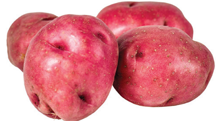 Picture of Best Choice Red Potatoes