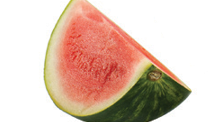 Picture of Mini Seedless Watermelon
