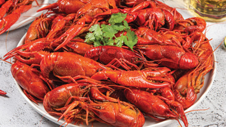 Picture of Alfocan Whole Cooked Crawfish